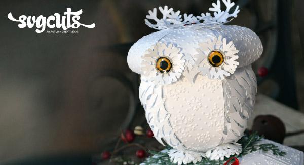 sharalyn-owl-hero