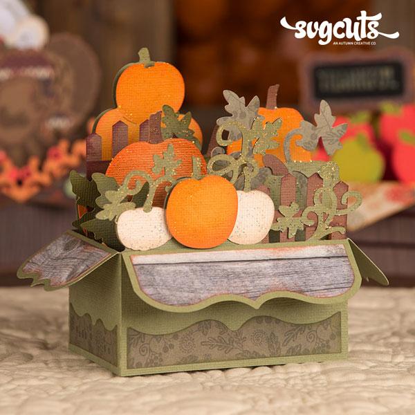 Pumpkin-Box-Card-SVGCuts