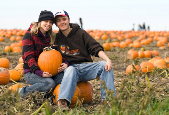 about-us-pumpkin-patch