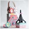 paris-purse-box-svg_lrg