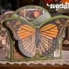 boho-butterflies_02_LRG.jpg