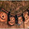vintage-halloween-svg_05_lrg