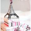 paris-valentine-svg-01