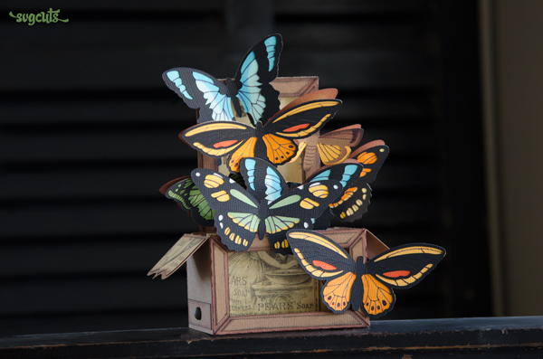 Boho Butterflies Box Card from SVGCuts